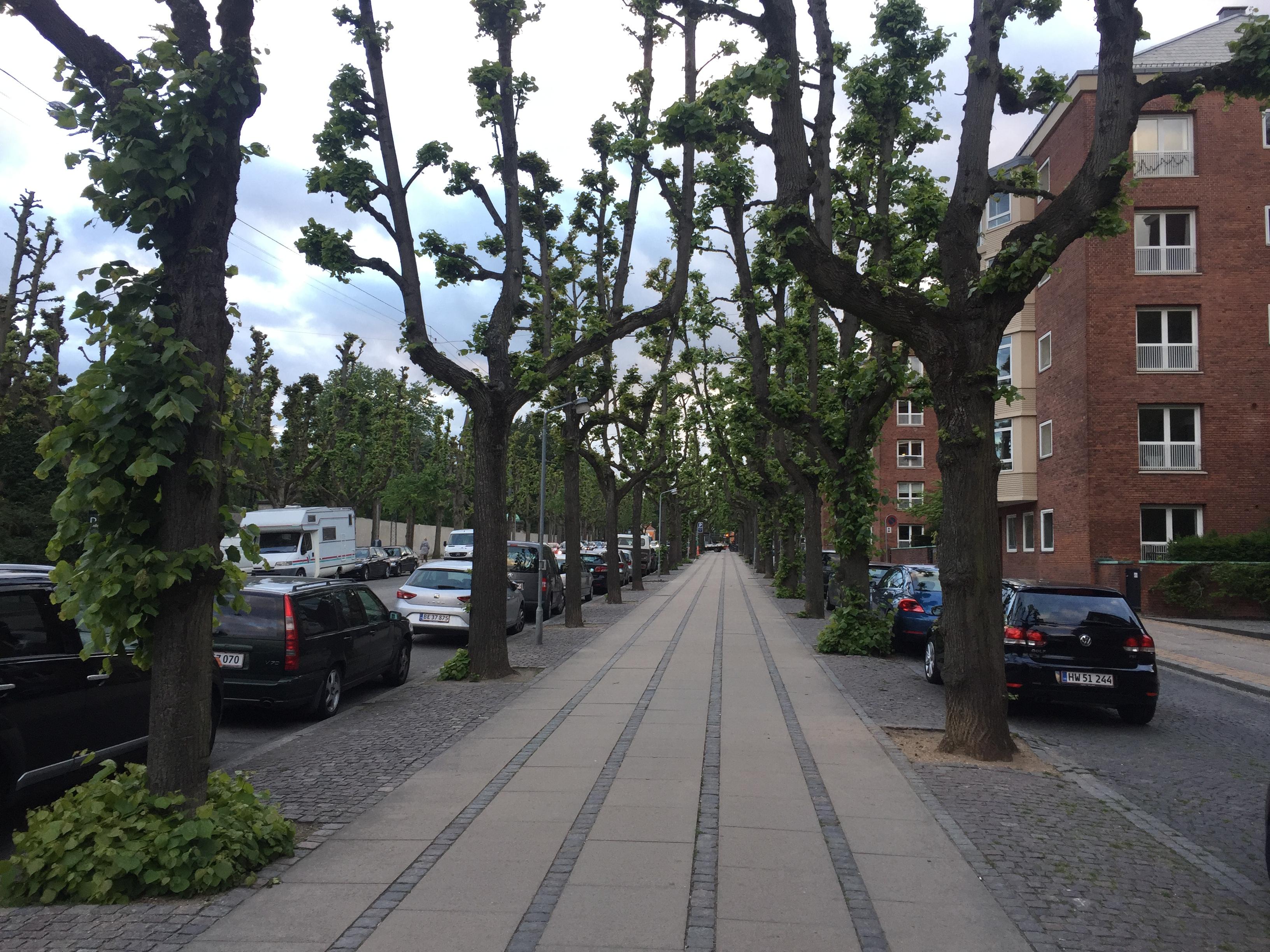 Calle de Copenhague